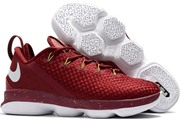 LeBron 14 Low 012